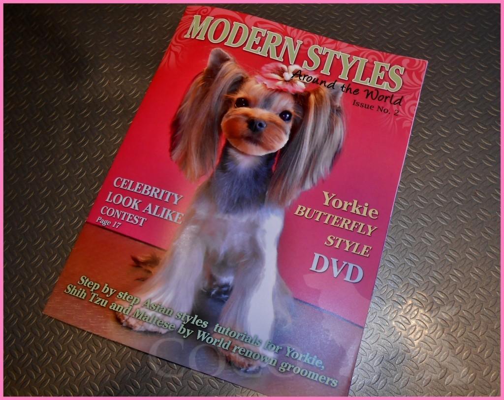 modern styles around the world